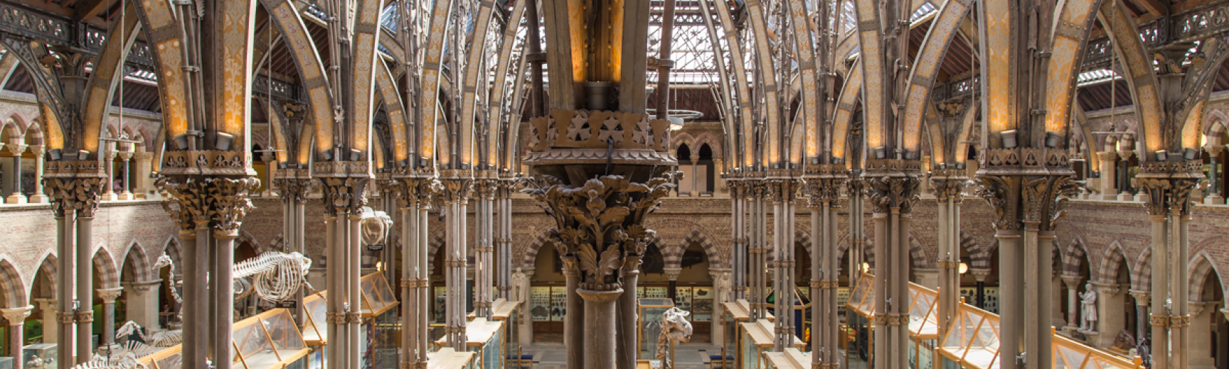 Oxford University Museum of Natural History main court