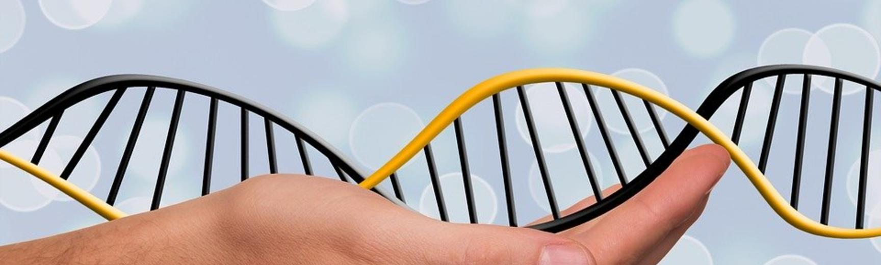 dna in hand