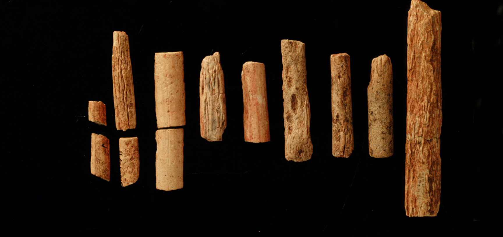 Fragments of ivory rods.