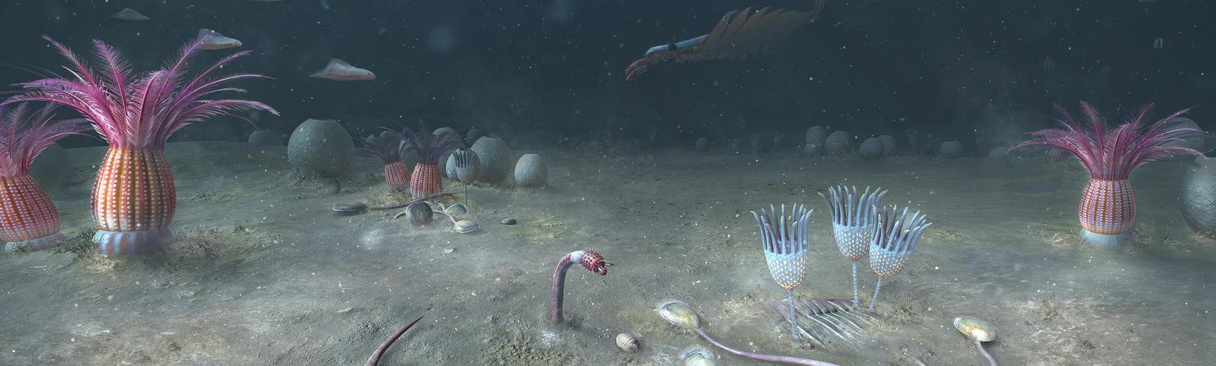 Cambrian ocean scene