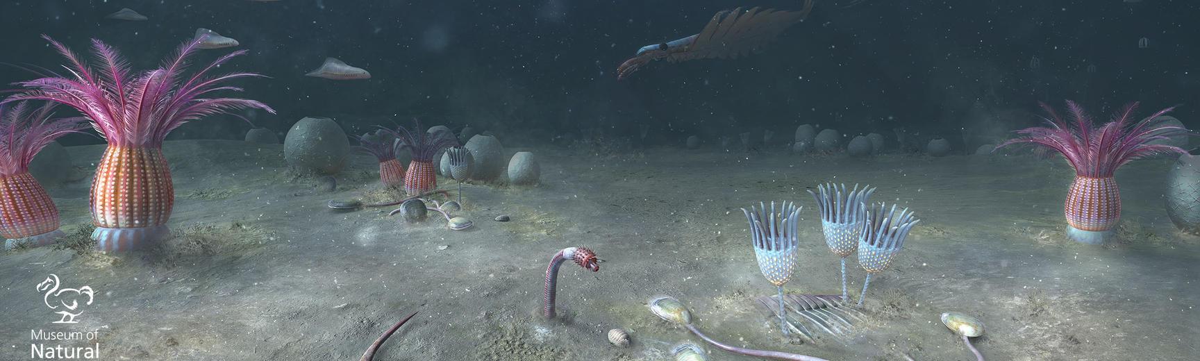 Cambrian sea floor, Yunnan Province, China - 518 million years ago.
