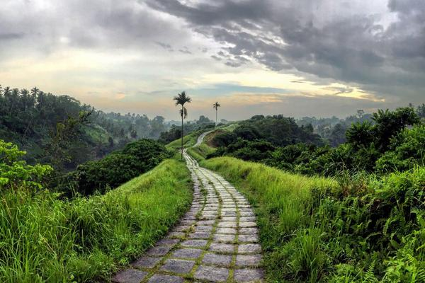 path leading to a green natural landscape