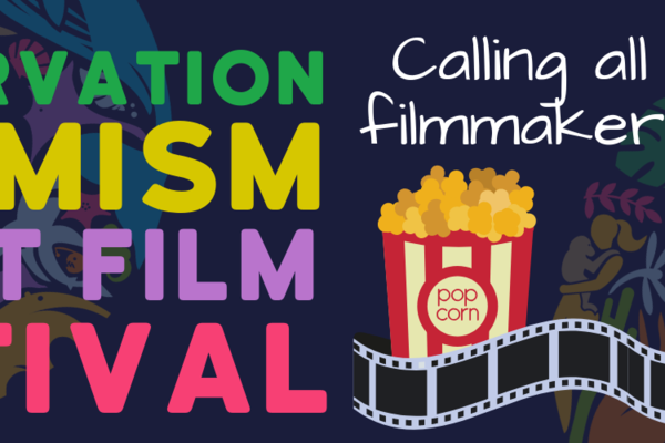 co film festival banner for site