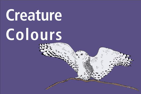 creature colours image