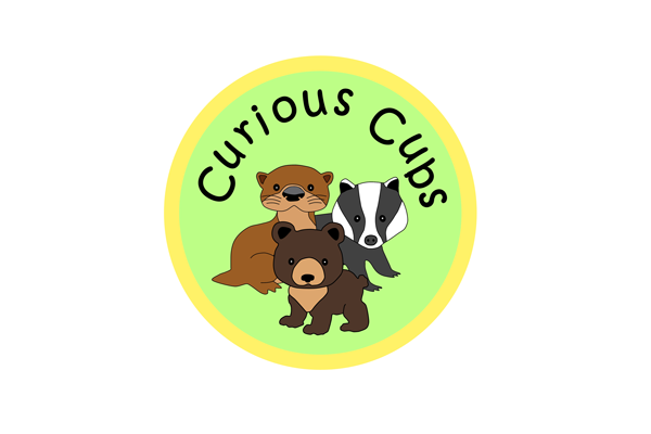 curious cubs logo 2016