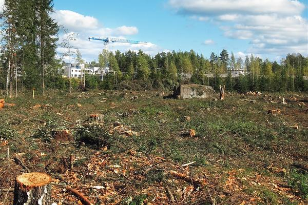 deforested 574185