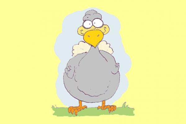 dodo learning zone