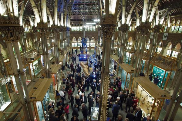events  main court evening reception landscape