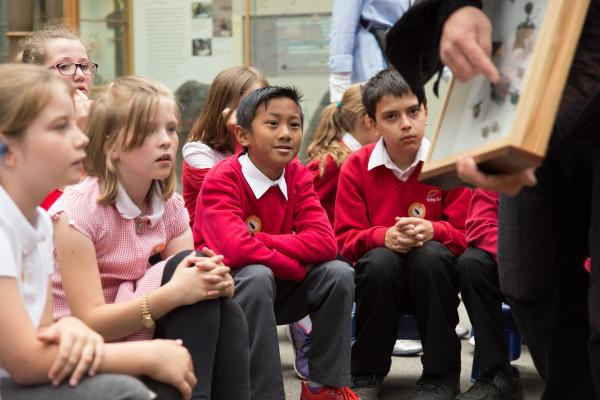 Book a school visit to the Museum of Natural History