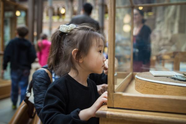 Child at the Oxford University Museum of Natural History
