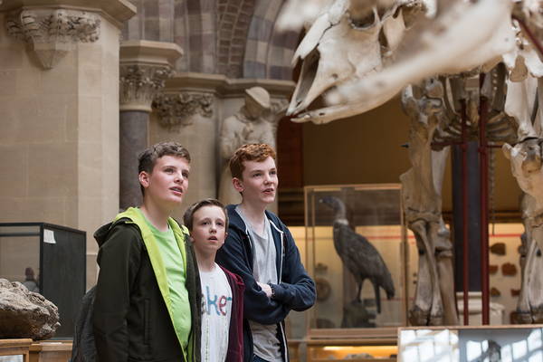 Children observing the mammal skeletons at the Museum