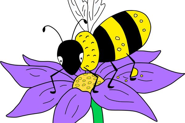 Bee on a flower illustration