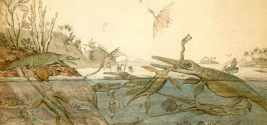 Duria Antiquior, a painting by Henry De La Beche based on Mary Anning's fossil finds
