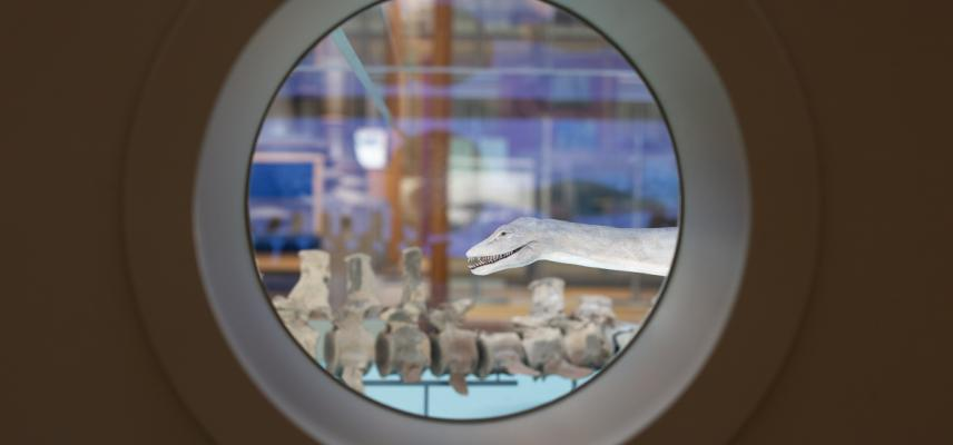 Portholes in the Out of the Deep display allow visitors to peer into the scale models and fossil skeletons