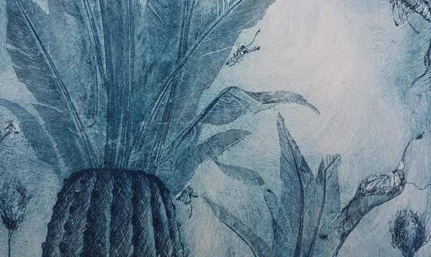 Charlie Davies - Cambrian Seas