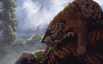 Illustration of one large and one smaller mammal each pulling at the same piece of meat