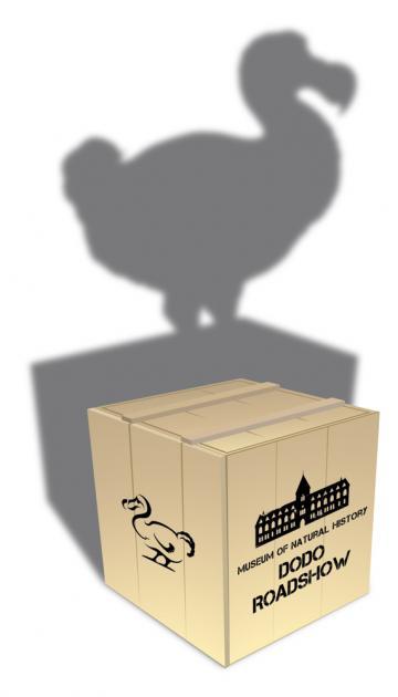 gtt crate logo dodo roadshow
